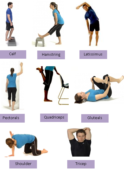 static stretches -