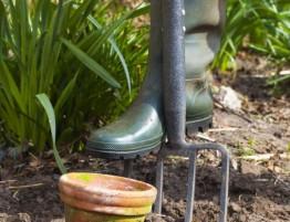 Gardening resized