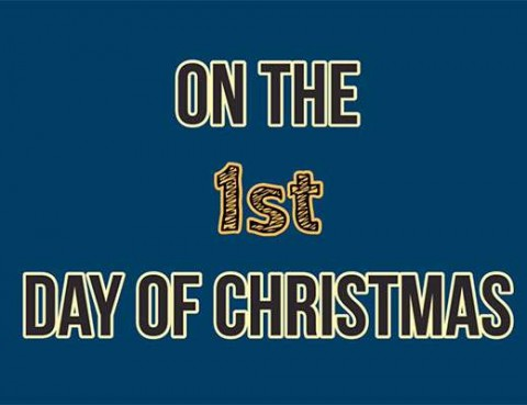 12-Days-of-Xmas-imgddd